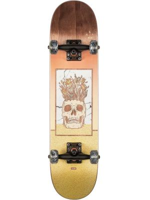 Skateboard Globe Celestial Growth Mini brown